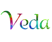veda-intelligent-compaction-consulting
